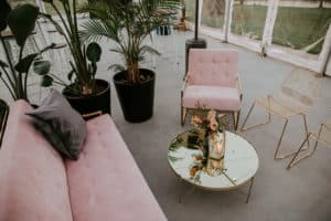 Otto and Chaise blush